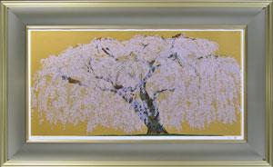 久遠寺の瀧桜(3)