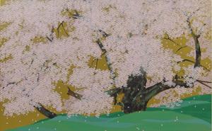 臥龍桜(8)