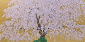 天龍寺の清日枝垂桜