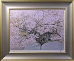 石割桜(1)