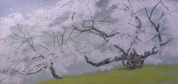 臥龍桜(7)